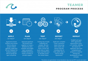 graphic showing the TEAMER process in 5 steps